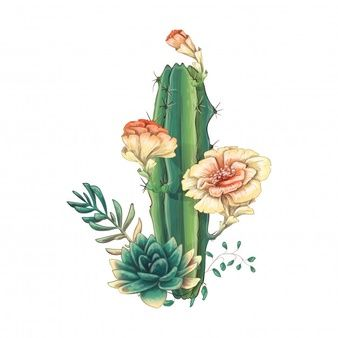 Card With Cactuses And Succulents Set In 2020 Cactus Painting