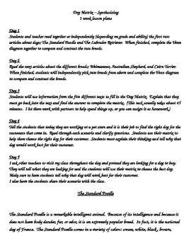 best school synthesis essay images nonfiction synthesizing synthesis synthesize information dog matrix