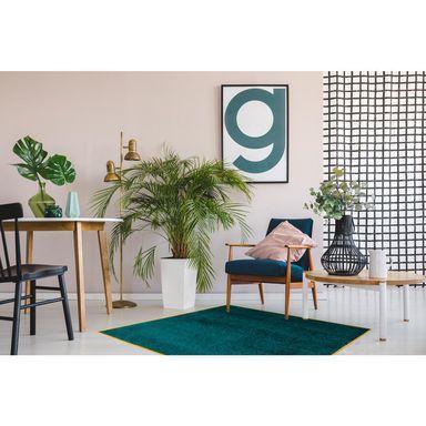 Dywan Kwadratowy Tati Zielony 100 X 100 Cm Dywany Wewnetrzne W Atrakcyjnej Cenie W Sklepach Leroy Merlin Pastel Walls Green Plants Living Room Interior