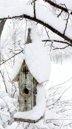 Birdhouse in Snow