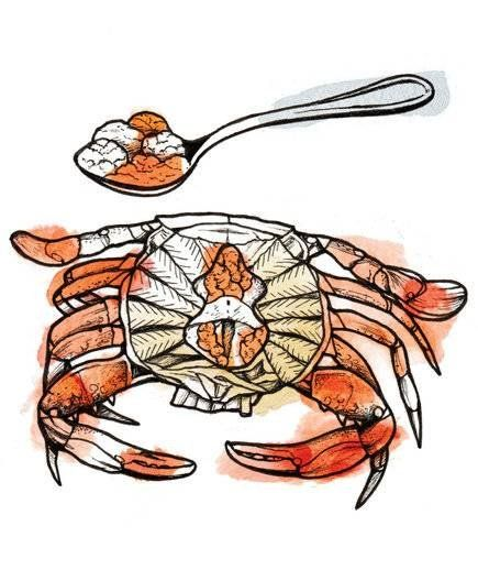 The Expert Way To Eat A Crab Crab Crab House Eat