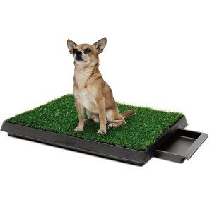 Indoor Pet Toilet Dog Grass Indoor Pets Dog Training Pads