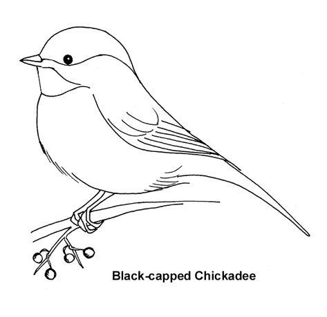 chickadee paintings - Nice sketch to make applique quilt..... - MyKingList.com