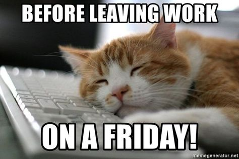 Before leaving work on a Friday! #Fridaymemes #Funnyfridaymemes #Fridaymemesforwork #Fridayworkmemes #ThankGoditsfriday #Itsfridaymemes #TGIFmemes #TGIFquotes #Fridaymorningmemes #Funnyfridayimages #Funnyfridayquotes #Happyfridaymemes #Fridaymemescute #Fridaymemespositive #Fridaymemesanimals #Fridayevememes #Memes #Funnymemes #Memes2021 #Fridaymemes #Bestfridaymemes #Funnyquotes #Sarcasticquotes #Hilariousquote #Humorousquote #Laughablequotes #Instaquotes #Quoteoftheday #Quotes #therandomvibez