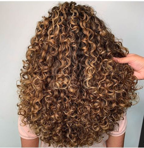 Curly Hair White Girl, Blonde Curly Hair Natural, Blonde Highlights Curly Hair, Dyed Curly Hair, Big Curly Hair, Colored Curly Hair, Curly Hair Tips, Curly Hair Care, Curly Hair Styles