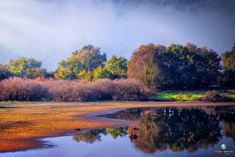 ROMIANEWS: Υπέροχα φθινοπωρινά χρώματα στο έλος Καλοδικίου.Λόγω της  σημαντική οικολογικής και βιολογικής αξίας του έχει χαρακτηριστεί ως π… |  Greece, Outdoor, Water