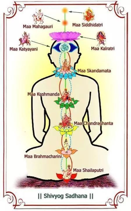 Image result for shivyog chakras | Spirituality in 2019