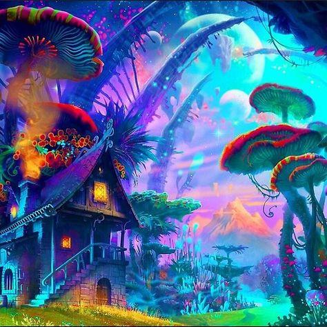 'magical forest' by hafid1984achbar