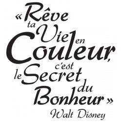 Franch Quotes Le Reve De Disney Disney Quotes French Quotes