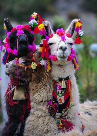Goat Decoration Necklace With Images Llama Macchu Picchu Peru