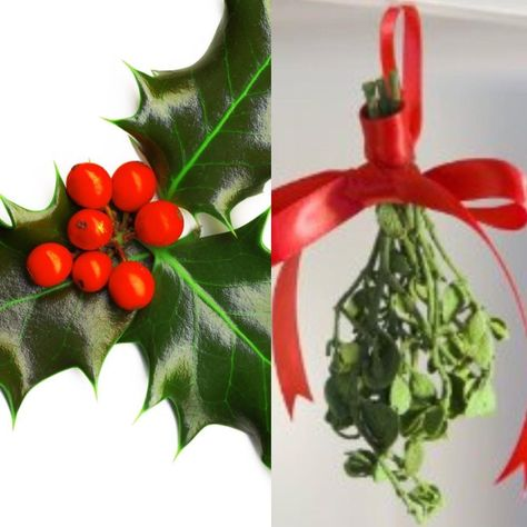 mistletoe Another holiday safety tip is...