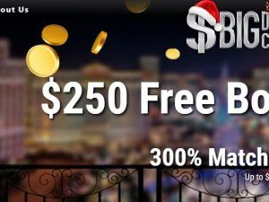 No Deposit Bonuses Nabble Casino Bingo Online Casino Bonus Casino Bonus Casino