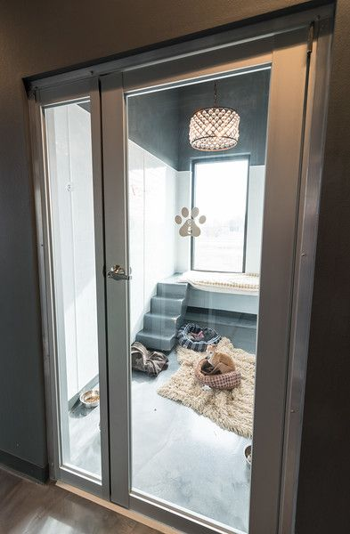 Luxury Suites - Contemporary style - masonco The Effective Pictures We Offer You About luxury dog ke Dog Rooms, House Rooms, Dog Room Decor, Luxury Dog Kennels, Dog Bedroom, Puppy Room, Dog Spaces, Pet Hotel, Animal Room