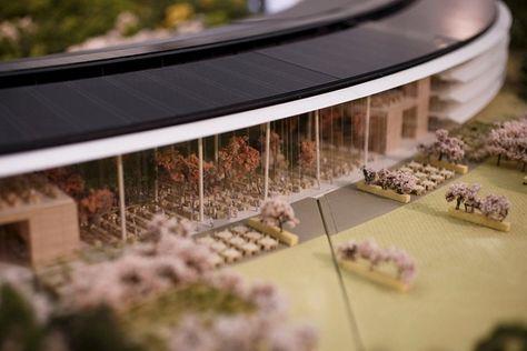 Dettaglio Dell Apple Space Campus A Cupertino Futuro Headquarter