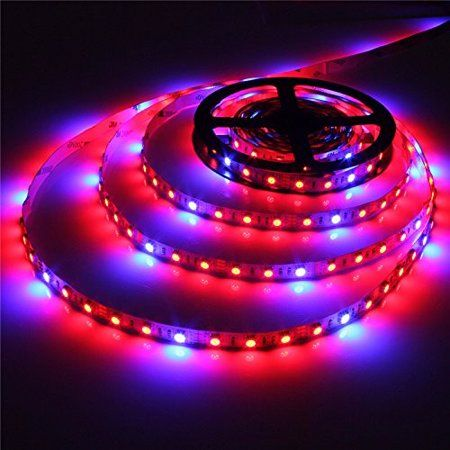 Solmore Led Grow Lights 5050 Smd Leds 12v Dc Waterproof Plant Grow Lights Led Strip Lights For In Grow Lights For Plants Hydroponics Led Grow Lights