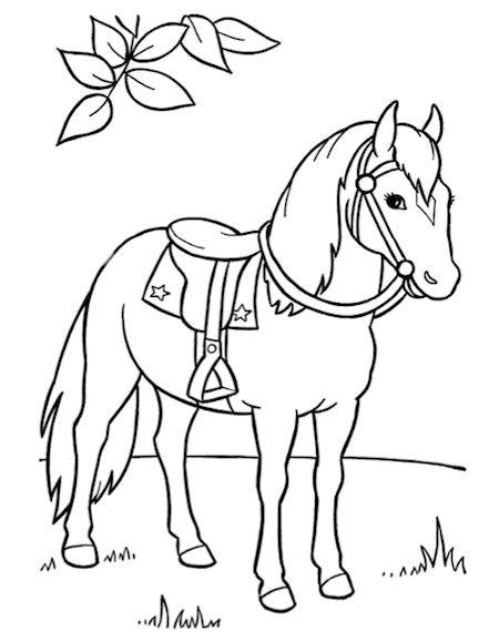 Paard In De Natuur Kleurplaat Caballo Para Colorear