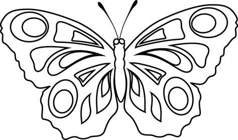 Papillon Dessin Recherche Google Coloriage Papillon Coloriage