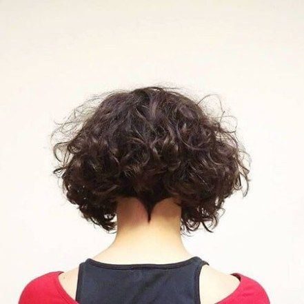 Short Curly Hairstyles For Women Short Curly Hair Curly Hair