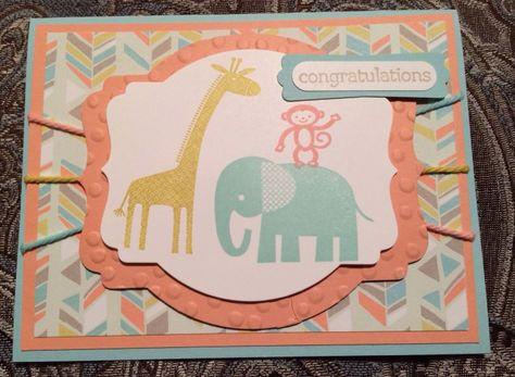 Zoo Babies 3 and SAB - Shannon Briglia