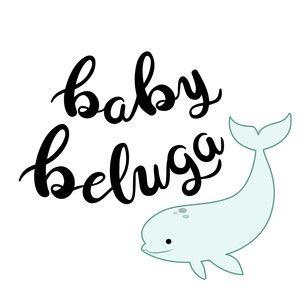 Baby Beluga Silhouette Design Design Store