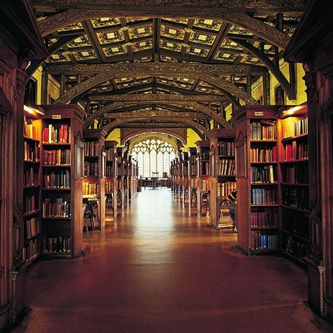 Stunning University Libraries Around the World You Need to See