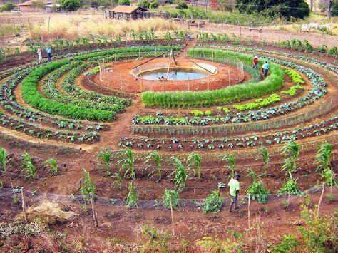 Huerto Urbano Mesas Cultivo Jardineras Madera Ofertas