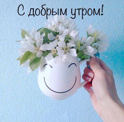 46 Odnoklassniki Good Morning Flowers Happy Birthday Wishes Cards Good Morning Quotes