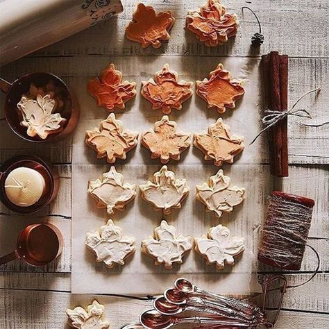 Photography Autumn Leaves Fall Leaf 64 Ideas For 2019 Autumn Cozy, Fall Winter, Autumn Tea, Winter Snow, Autumn Aesthetic, Christmas Aesthetic, Fall Treats, Fall Baking, Garden Care