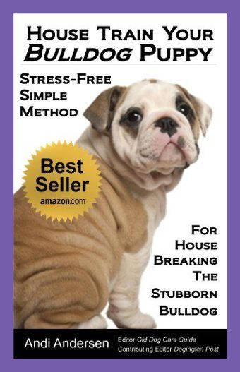 Puppy Toilet Training And House Training Puppy Potty Training Tips Puppy Potty Training I In 2020 Bulldog Puppies English Bulldog Puppies Potty Training Puppy