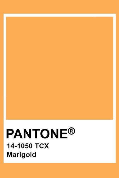 Pantone Marigold