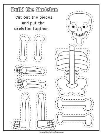 Human Body Worksheets | Learning/Homeschooling | Body ...