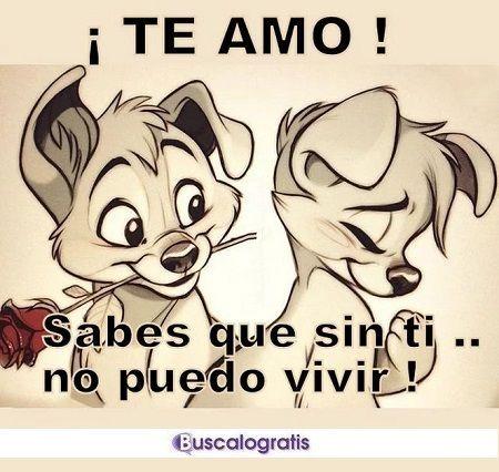 Frases De Amor Muy Lindas Frases Amor Frasesdeamor