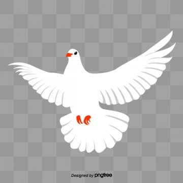Peace Dove White Dove Wings White Dove Png Transparent Clipart Image And Psd File For Free Download Dove Pictures Dove Images White Doves