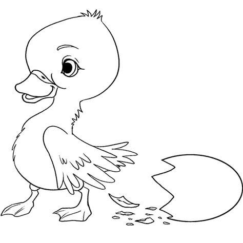 ördek Boyama Sayfası Hayvanlar Ve Yavrulari Pinterest