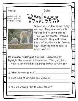 39+ Level l reading comprehension worksheets Top