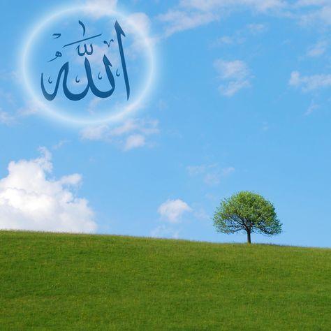 The Weekly Khutbah Volume 2 20142015 The Weekly Khutbah Series