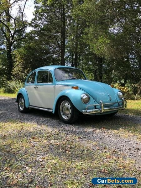 Car For Sale 1971 Volkswagen Beetle Classic