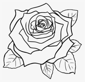 Art Symmetry Rose Order Rose Clipart Black And White Flowers Hd Png Download Clipart Black And White Rose Outline Rose Clipart