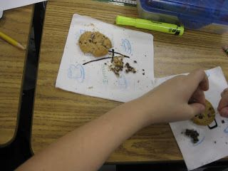 Chocolate Chip Mining: (Renewable Rescources & Land Preservation)