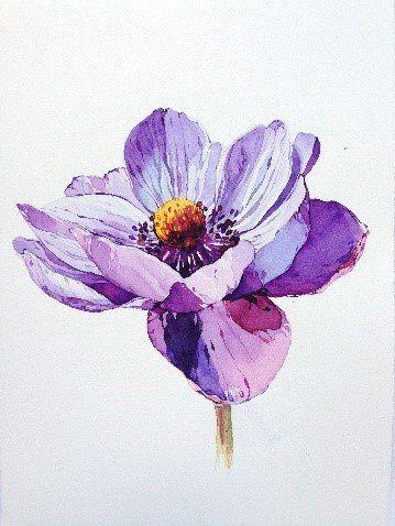 Anemone Tattoo Watercolor Anemone Tattoo Watercolor In 2020 Watercolor Flowers Paintings Watercolor Illustration Floral Watercolor