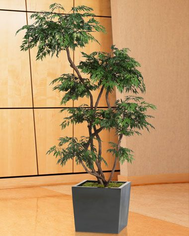 cleaning artificial plants | Home Tips | Pinterest | Cleanses ...