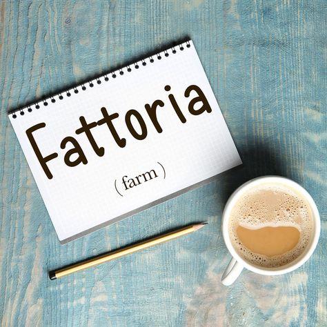 Italian Word of the Day: Fattoria (farm)
