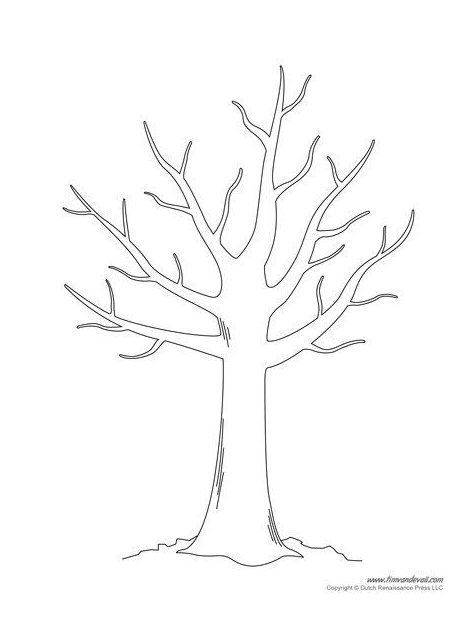 Tree Templates Bare Tree Drawing Baretreedrawing Free Tree Templates And Tree Printables For Your School Pro In 2021 Tree Templates Tree Drawing Tree Coloring Page