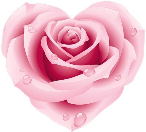 розовое сердечкоpng Tatouages De Roses De Couleur Rose