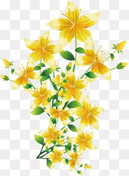 Flores Amarelas Yellow Spring Flowers Free Watercolor Flowers Flower Png Images