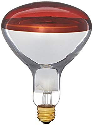 Philips 415836 Heat Lamp 250 Watt R40 Flood Light Bulb Led Household Light Bulbs Amazon Com Light Bulb Heat Lamps Light Bulb Wattage