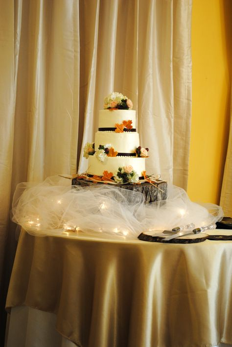 Better view of the cake with the fairy lights, tulle, and \