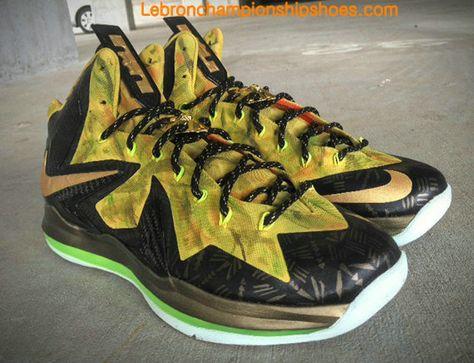 Guarantee Quality Nike LeBron 10s PS. Elite MVP Custom