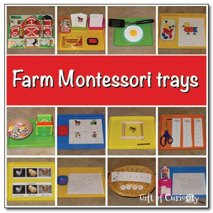 A collection of 12 farm-themed Montessori trays  for a preschool farm unit #farm #Montessori || Gift of Curiosity