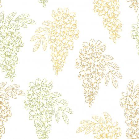 Acacia Flower Color Graphic Seamless Pattern Sketch Illustration Vector Affiliate Color Graphic In 2020 Pattern Sketch Graphic Design Photography Illustration